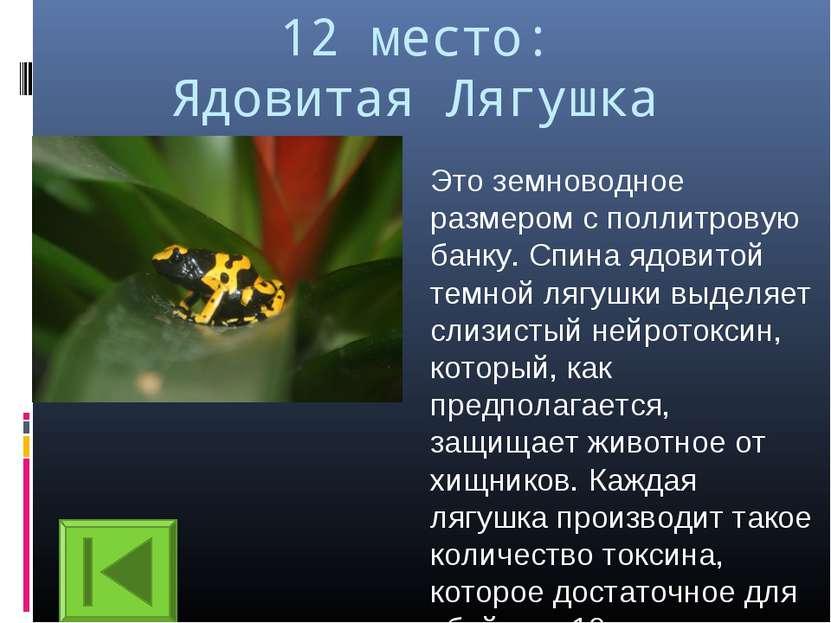12 место: Ядовитая Лягушка Это земноводное размером с поллитровую банку. Спин...