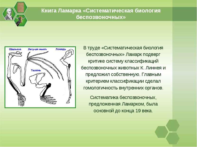 Книга Ламарка «Систематическая биология беспозвоночных» В труде «Систематичес...