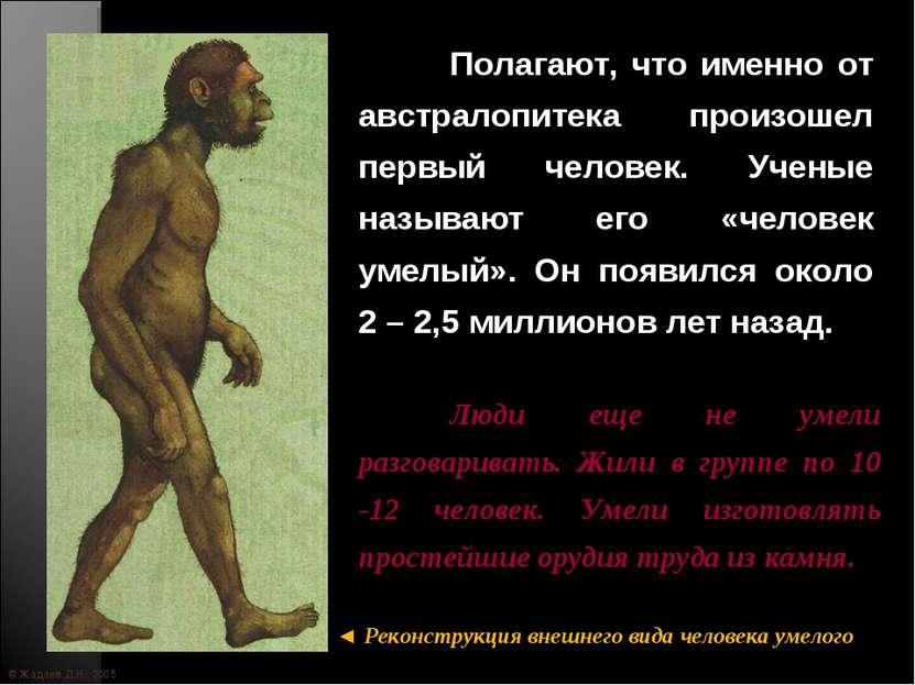 © Жадаев Д.Н., 2005 Полагают, что именно от австралопитека произошел первый ч...