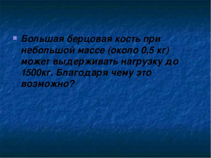Большая берцовая кость при небольшой массе (около 0,5 кг) может выдерживать н...