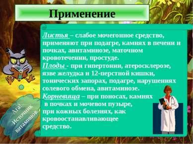 Применение Ага! Источник витаминов.. Листья – слабое мочегонное средство, при...