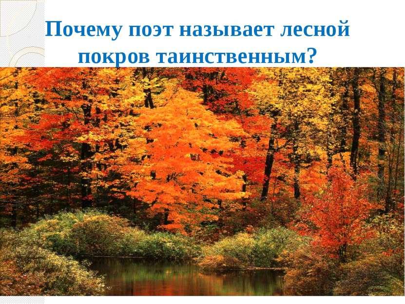 Почему поэт называет лесной покров таинственным?