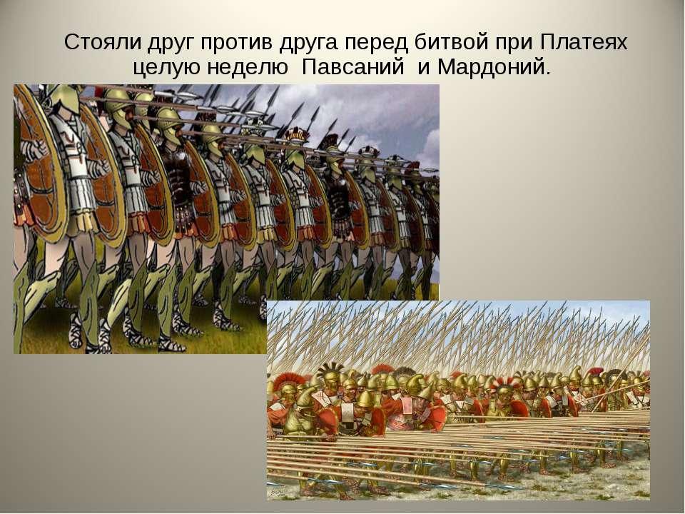 Стояли друг против друга перед битвой при Платеях целую неделю Павсаний и Мар...