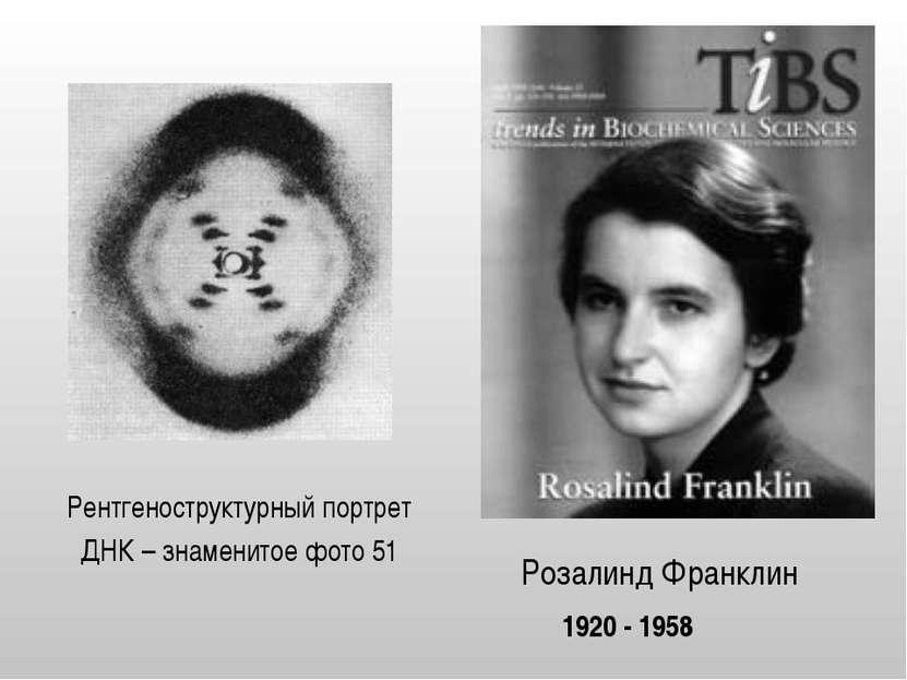 Розалинд Франклин Рентгеноструктурный портрет ДНК – знаменитое фото 51 1920 -...