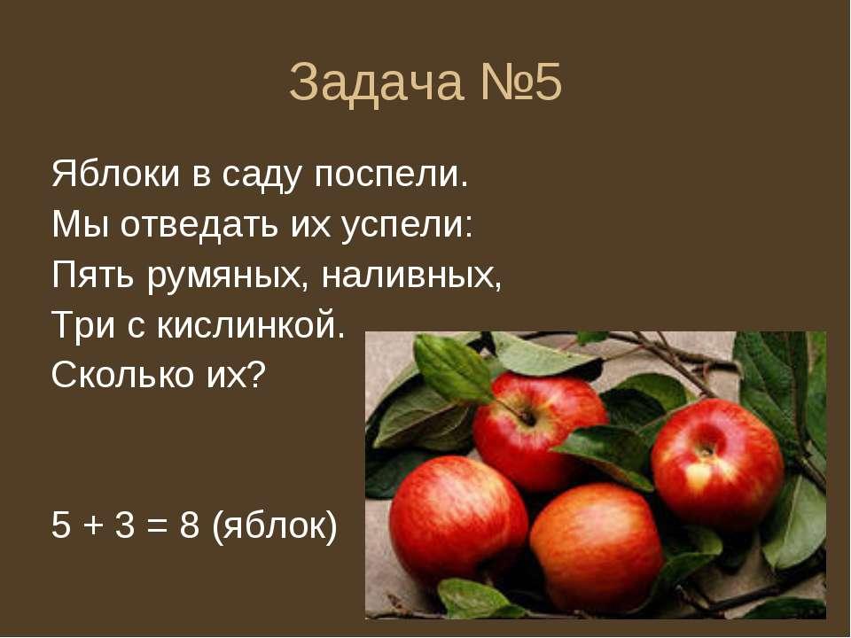 Задача №5 Яблоки в саду поспели. Мы отведать их успели: Пять румяных, наливны...