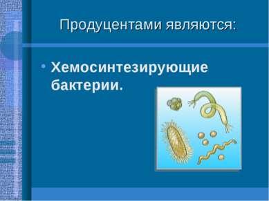 Продуцентами являются: Хемосинтезирующие бактерии.