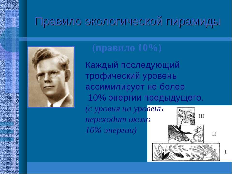 Правило экологической пирамиды (правило 10%) Раймонд Линдеман (1915-1942) Каж...