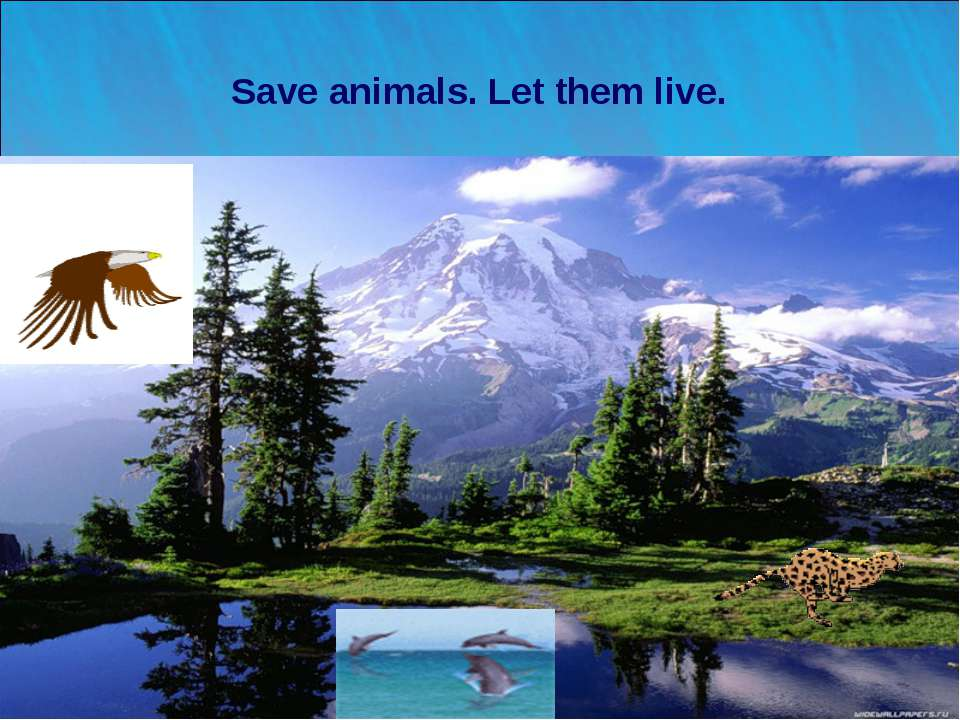 * Save animals. Let them live. Лето