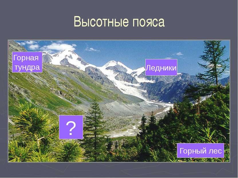 Высотные пояса Горный лес Ледники Горная тундра ?