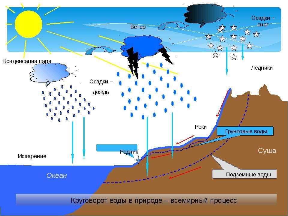 Испарение Конденсация пара Осадки – дождь Осадки – снег Ветер Круговорот воды...