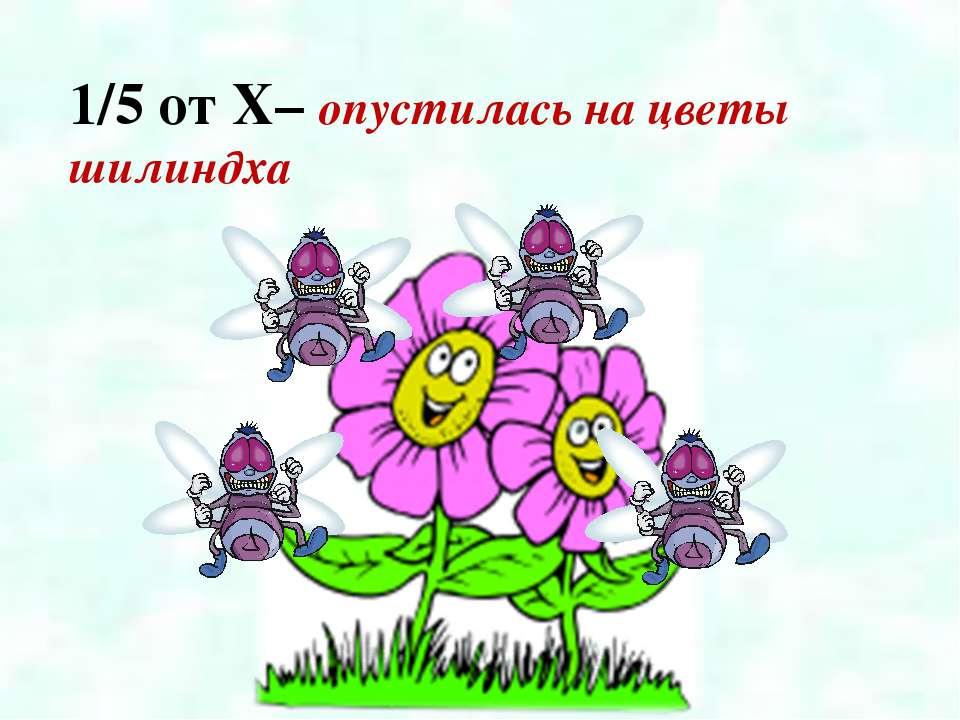 1/5 от X– опустилась на цветы шилиндха