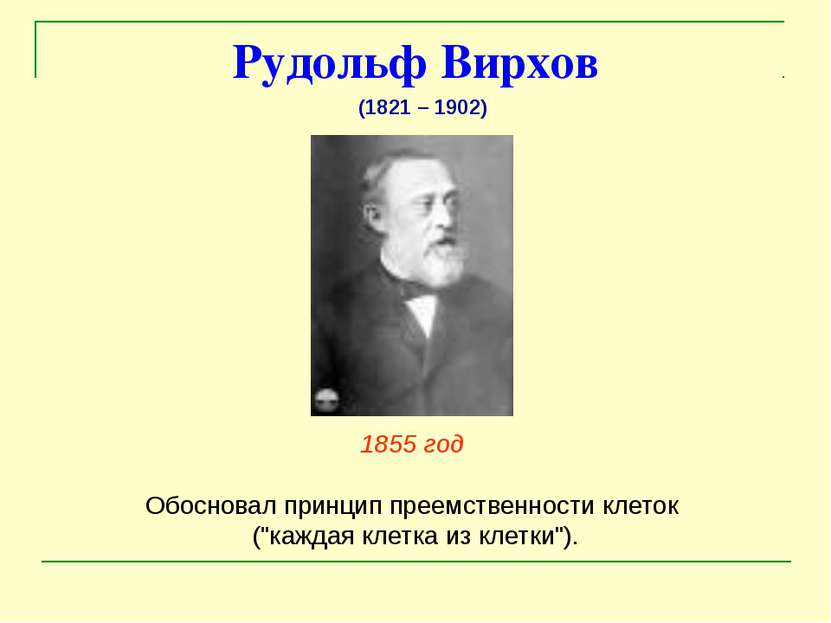 """Рудольф Вирхов 1855 год Обосновал принцип преемственности клеток (""""каждая кле..."""