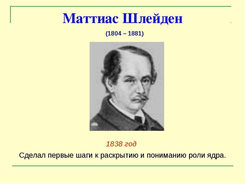Маттиас Шлейден 1838 год Сделал первые шаги к раскрытию и пониманию роли ядра...
