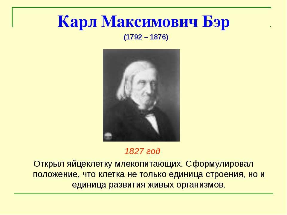 Карл Максимович Бэр 1827 год Открыл яйцеклетку млекопитающих. Сформулировал п...