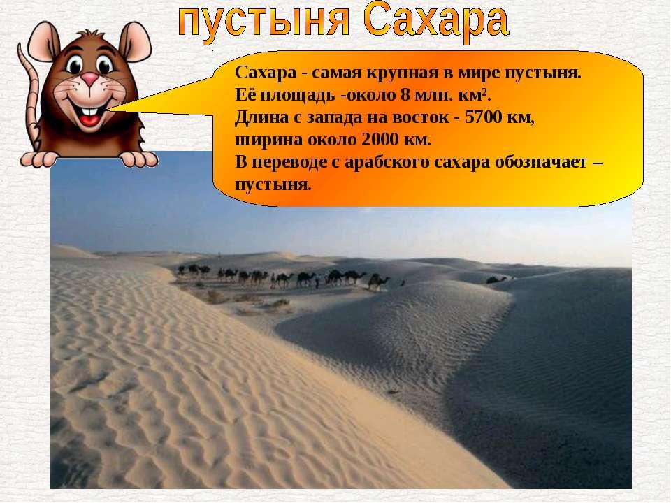 Сахара - самая крупная в мире пустыня. Её площадь -около 8 млн. км². Длина с ...