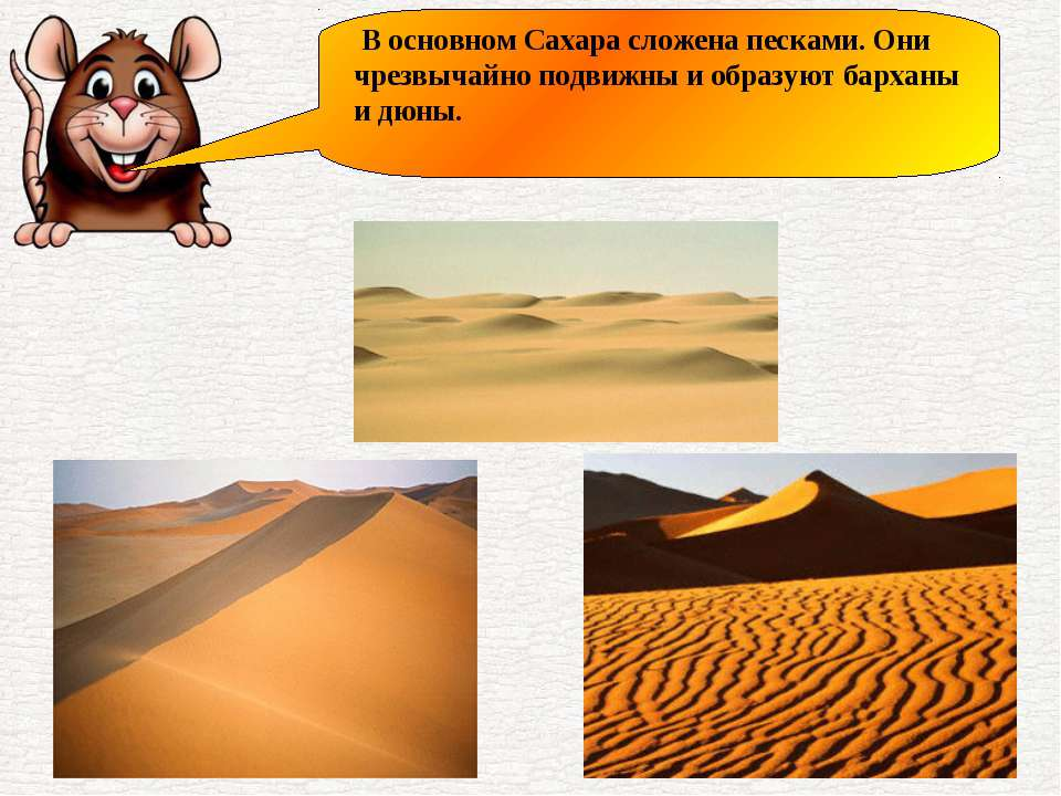 В основном Сахара сложена песками. Они чрезвычайно подвижны и образуют бархан...