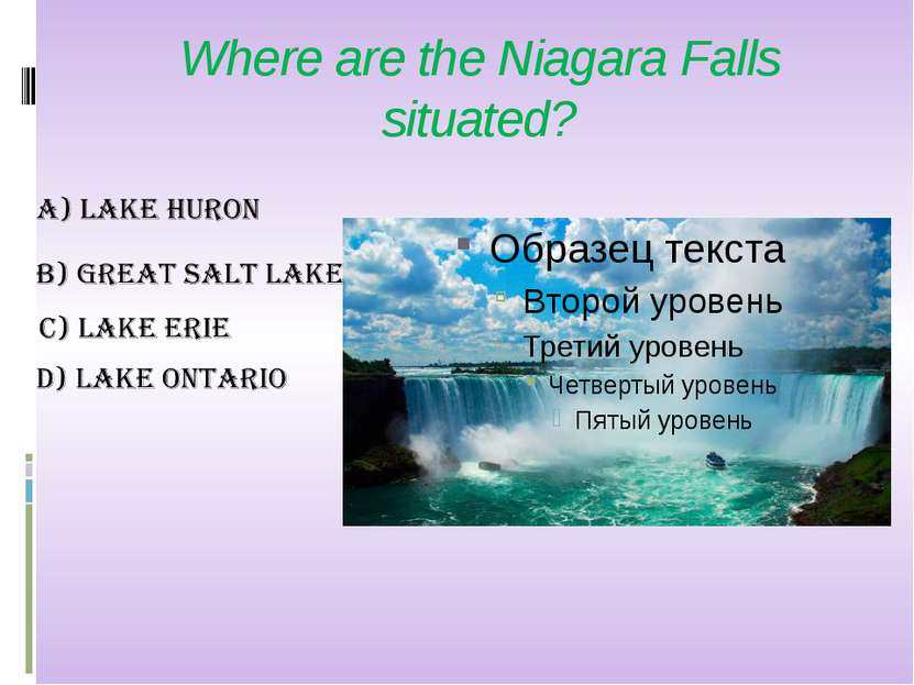 Where are the Niagara Falls situated?