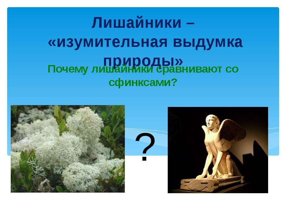 Лишайники – «изумительная выдумка природы» Почему лишайники сравнивают со сфи...