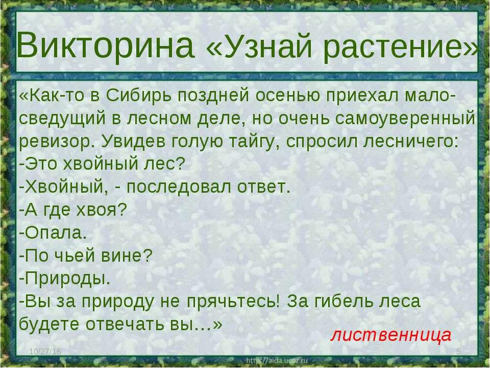 * * Викторина «Узнай растение» «Как-то в Сибирь поздней осенью приехал мало- ...