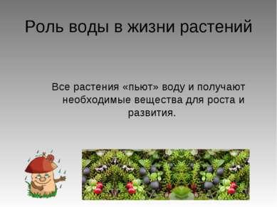 Роль воды в жизни растений Все растения «пьют» воду и получают необходимые ве...