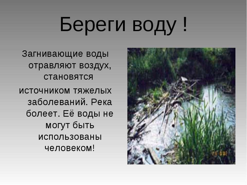 Береги воду ! Загнивающие воды отравляют воздух, становятся источником тяжелы...