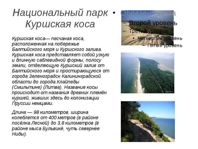 Национальный парк Куршская коса Куршская коса— песчаная коса, расположенная н...