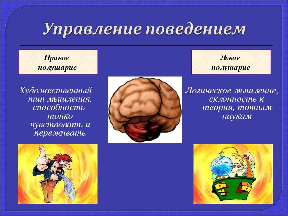 Художественный тип мышления, способность тонко чувствовать и переживать Логич...