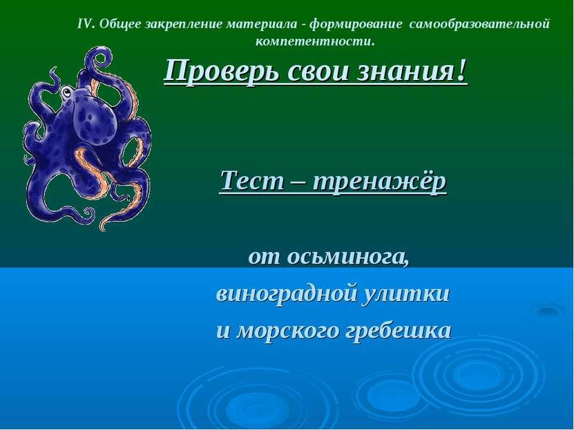 IV. Общее закрепление материала - формирование самообразовательной компетентн...