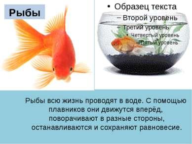 Рыбы всю жизнь проводят в воде. C помощью плавников они движутся вперёд, пово...