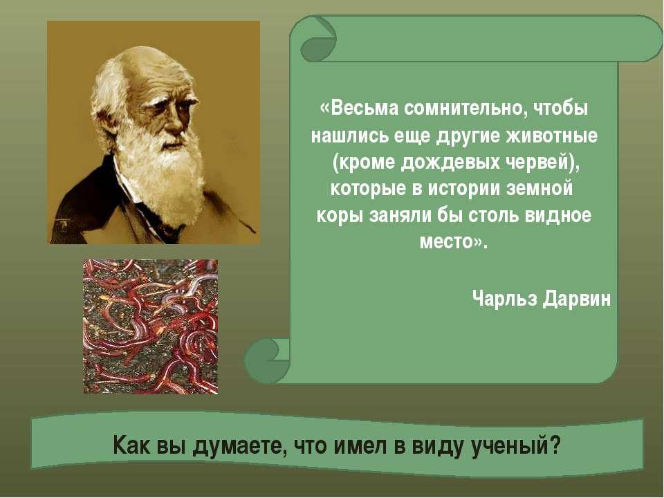 Как вы думаете, что имел в виду ученый? «Весьма сомнительно, чтобы нашлись ещ...