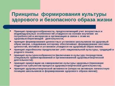 Принципы формирования культуры здорового и безопасного образа жизни Принцип п...