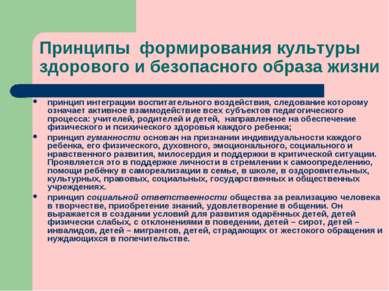 Принципы формирования культуры здорового и безопасного образа жизни принцип и...