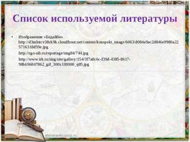 Список используемой литературы Изображение «Бодайбо» http://d3mlntcv38ck9k.cl...
