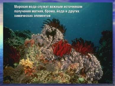 Морская вода служит важным источником получения магния, брома, йода и других ...