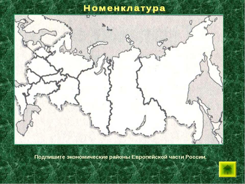 Подпишите экономические районы Европейской части России.