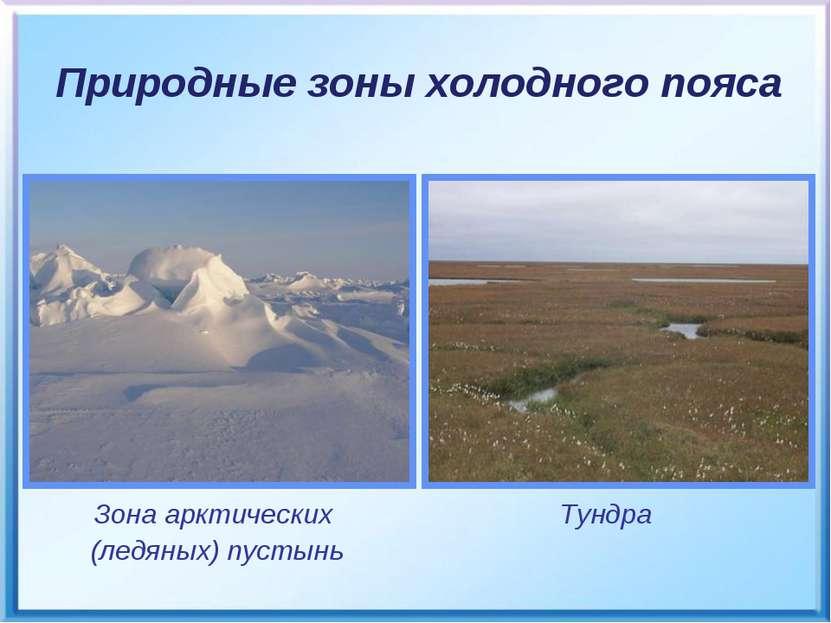 Зона арктических (ледяных) пустынь Тундра Природные зоны холодного пояса