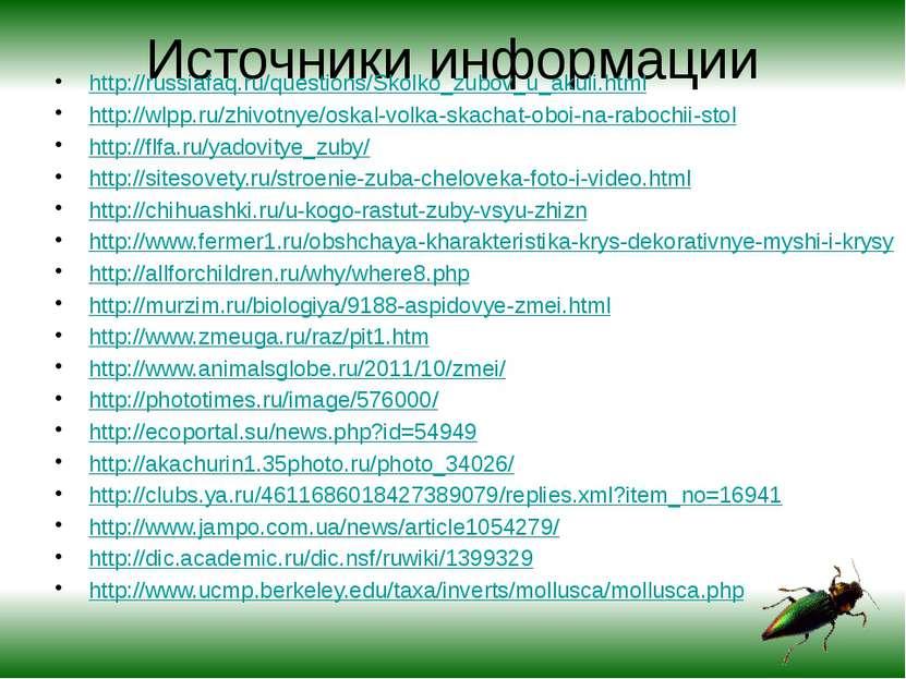 Источники информации http://russiafaq.ru/questions/Skolko_zubov_u_akuli.html ...