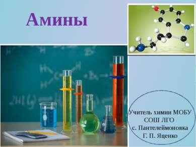 Амины Учитель химии МОБУ СОШ ЛГО с. Пантелеймоновка Г. П. Яценко