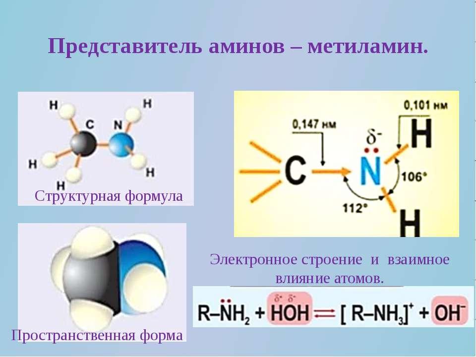 Представитель аминов – метиламин. Структурная формула Пространственная форма ...