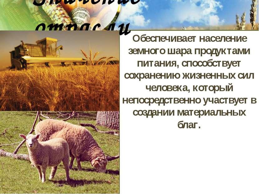 Обеспечивает население земного шара продуктами питания, способствует сохранен...