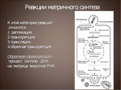 К этой категории реакций относятся: репликация, транскрипция, трансляция, обр...