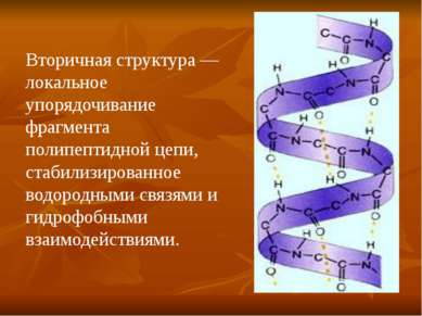 Вторичная структура — локальное упорядочивание фрагмента полипептидной цепи, ...