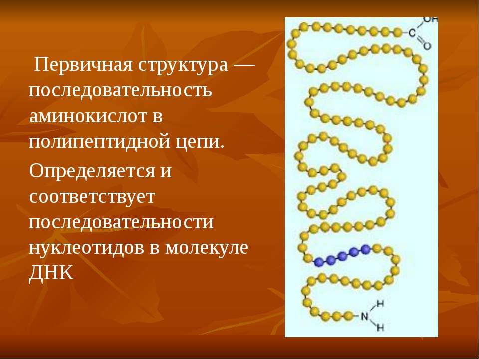 Первичная структура — последовательность аминокислот в полипептидной цепи. Оп...