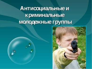 Антонина Сергеевна Матвиенко 2010г. Антисоциальные и криминальные молодежные ...