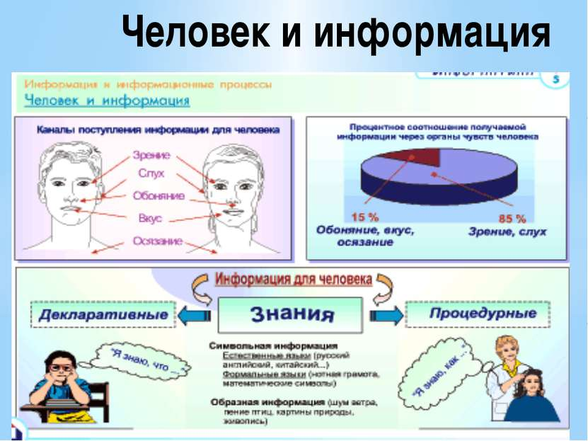 Человек и информация