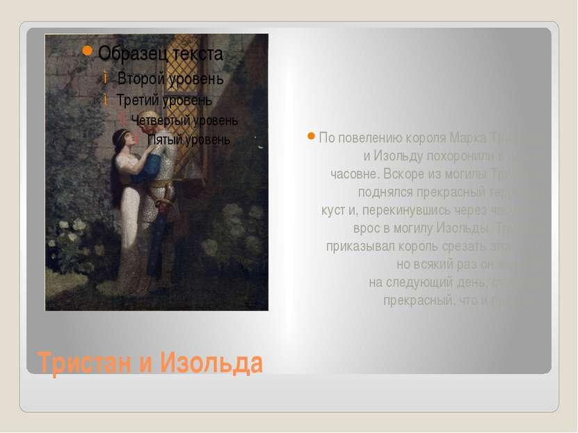 Тристан и Изольда Поповелению короля Марка Тристана иИзольду похоронили во...