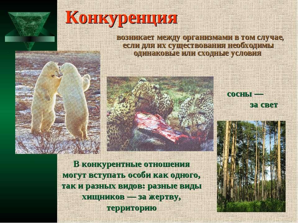 Конкуренция возникает между организмами в том случае, если для их существован...