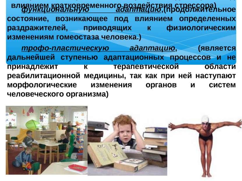 Выделяет различные уровни адаптационных процессов: привыкание,(начальный проц...