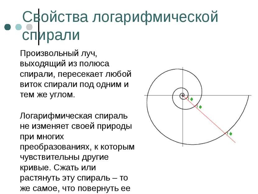 Свойства логарифмической спирали Произвольный луч, выходящий из полюса спирал...