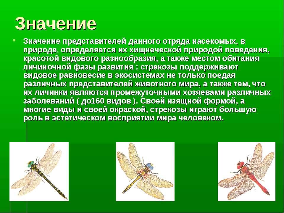 Значение Значение представителей данного отряда насекомых, в природе, определ...